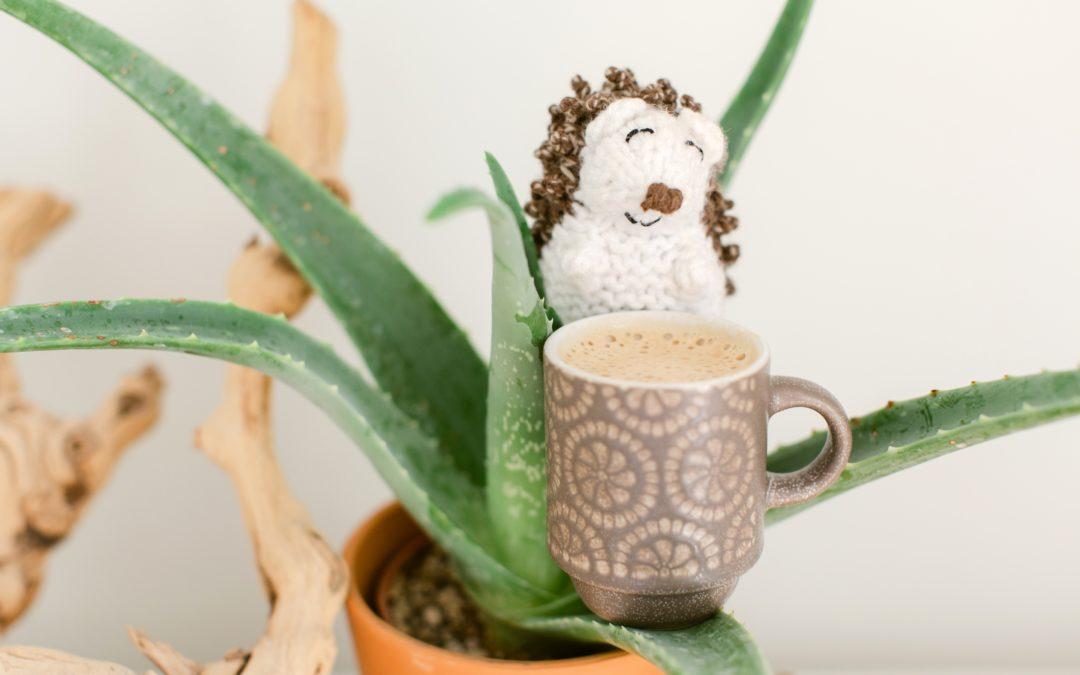Why I Love My Nespresso Machine